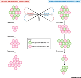 Aggressive Therapy versus Chronic Control of Tumors.
