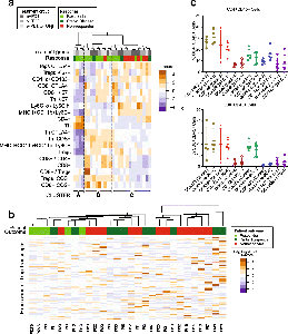 Heterogeneous mechanisms of tumor response to α-PD-1 and α-TGFβ therapy.