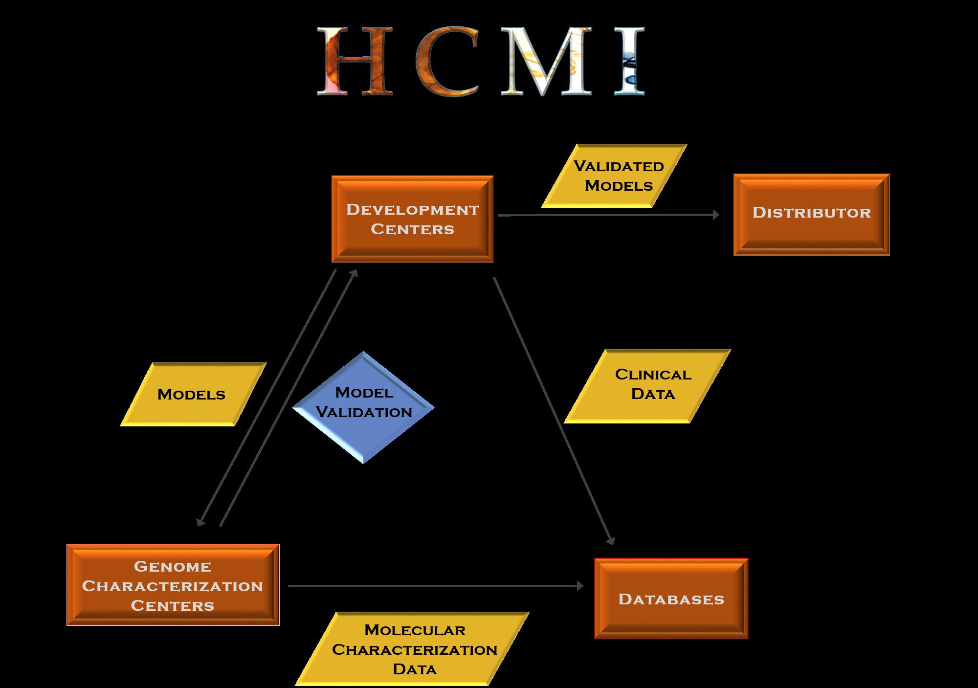 HCMI Model Processing