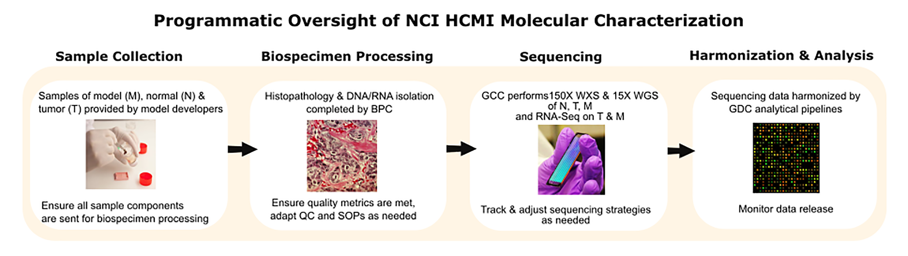Programmatic Oversight of NCI HCMI Molecular Characterization