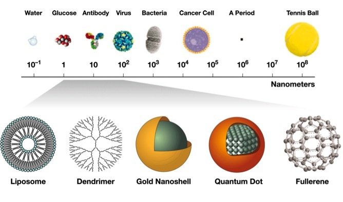 Scale showing examples of nanoparticles that are 1 through 100 nanometers in size, compared to other molecules