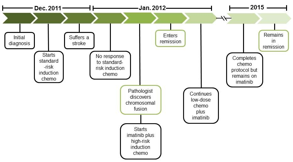 Schematic timeline of Harrison's cancer treatment