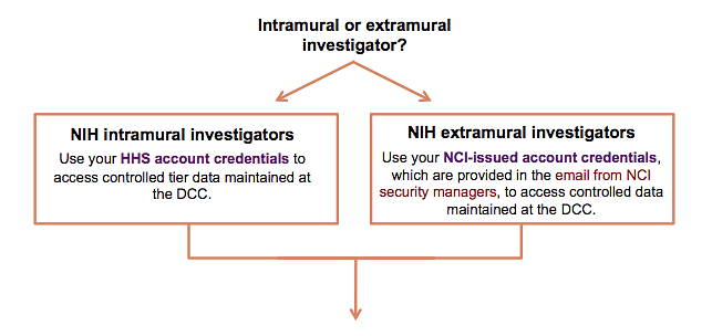 Intramural and extramural investigators must access data at DCC using different login information