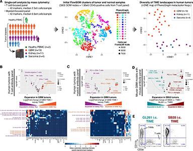 Simonds et al. (2021) J Immunother Cancer. CC BY 4.0
