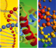 This image depicts an RNA strand, peptide alpha helices, and small molecules.