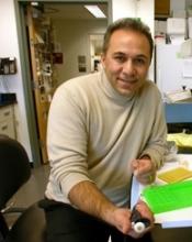 Dr. Soheil Meshinchi