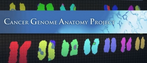 Cancer Genome Anatomy Project