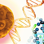 Human Cancer Models Initiative icon