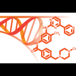 Cancer Target Discovery and Development Logo