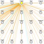 Predicted beta catenin interacting proteins.
