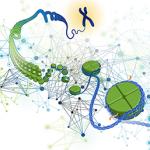 Genomics of Gene Regulation