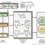 Overview of the pathway and network analysis approach.