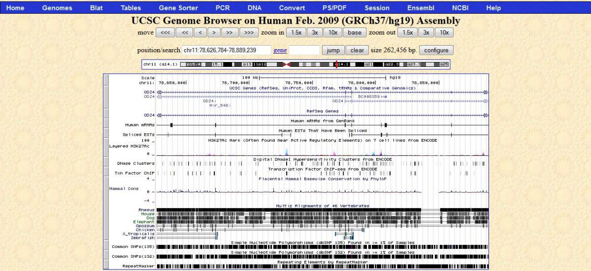 UCSC Genome Browser on Human Feb. 2009 Assembly